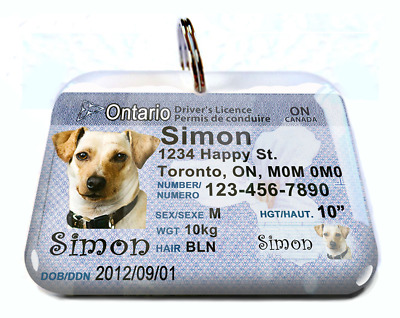 Ontario Canada Driver License Canadian dog cat tag custom by ID4PET