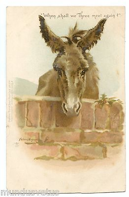 HELENA MAGUIRE non signée . Ane. Donkey .When shall we three meet again . 驢 . ロバ