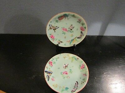 Antique 19th Century Chinese Celadon Canton Famille Rose Porcelain 2 Plates