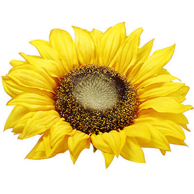 "11"" Silk Sunflower Head Floating Flower -Yellow (pack of 12)"