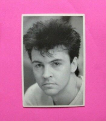 Paul Young Official Vintage Postcard Not Cd Lp Poster Shirt Dvd Pin Button Uk Ma