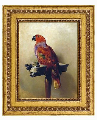Sir Edwin Henry Landseer The Lory, 1837 Oil Painting repro