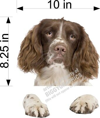 Brown English Springer Spaniel Dog  Vinyl  Peeker Decal  Sticker For Car Window