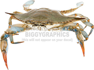 ORDER & PICK Up Here Seafood Crab Sign Decals 12