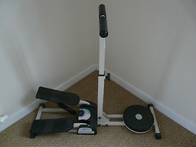 Step and Twister Exercise Machine