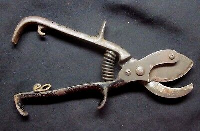"Antique iron steel garden farm tool 8-1/4"" pruning shears clippers w sharp blade"