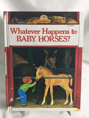 Whatever Happens to Baby Horses? by Bill Hall c1965 C Hardcover