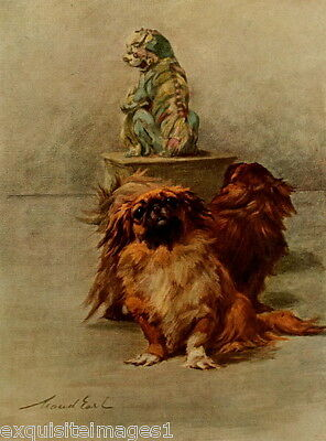 1914 Maud Earl~Two Cute Pekingese Dog Dogs ~ NEW Large Note Cards