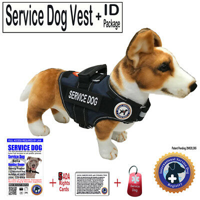"SERVICE DOG PKG - Vest +ID + ADA Card + Dog Tag - ""Walkabout"" by LuvDoggy"