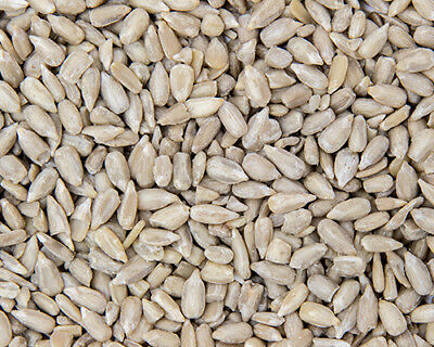Premium Sunflower Hearts Bakery Grade Kernels Wild Bird Food 3kg 5kg 15kg 20kg