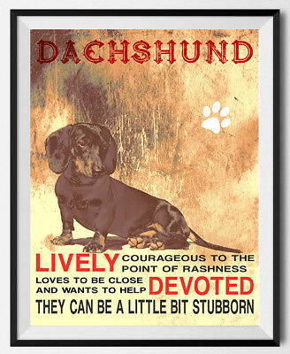 DACHSHUND DOG character Quote Art Print 8 x10 image modern home wall decor