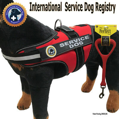 "SERVICE DOG PKG - Vest + Perfect Leash + Rights info - ""Walkabout"" by LuvDoggy"