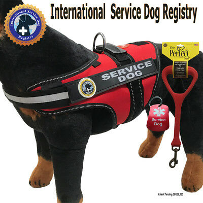 "SERVICE DOG PKG - Vest + Perfect Leash + Dog Tag - ""Walkabout"" by LuvDoggy"