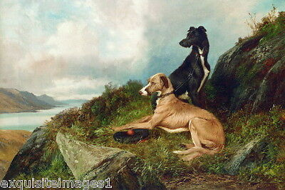 1900 Scottish Deerhound Puppy Dog Dogs on Cliff over River~ NEW Large Note Cards
