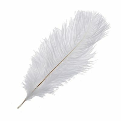 10 Pieces White Natural Ostrich Feather 20-25cm Wedding DIY SS