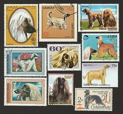 AFGHAN HOUND ** Int'l Dog Postage Stamps  **Unique Gift Idea**
