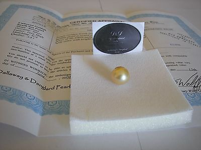 South Sea Gold Loose Round Cultured Pearl AA+ 12--13 mm (G.I.A value $2,050)