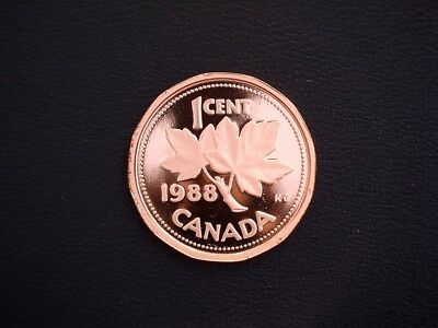 1988 Canada 'Frosted Proof' 1 cent coin