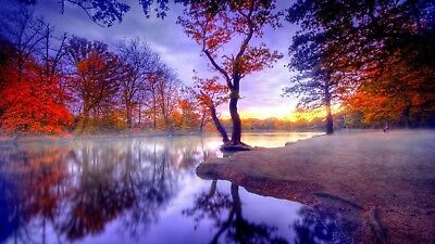 Autumn Trees Lake Woodland Canvas Picture Poster Print Wall Art Unframed #1133