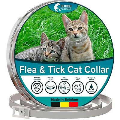 CAT FLEA & TICK COLLAR CATS & KITTENS (13 inch) 8 MONTH PROTECT MADE IN BELGIUM
