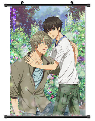 B1173 Super Lovers super lover anime manga Wallscroll Stoffposter 25x35cm