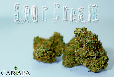 Fiori di canapa SOUR CREAM marijuana cannabis light 3 Gr