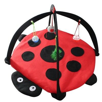 Ladybird Pet Cat Toys Activity Tent Exercise Play Folding Soft Bed Mat With Toy