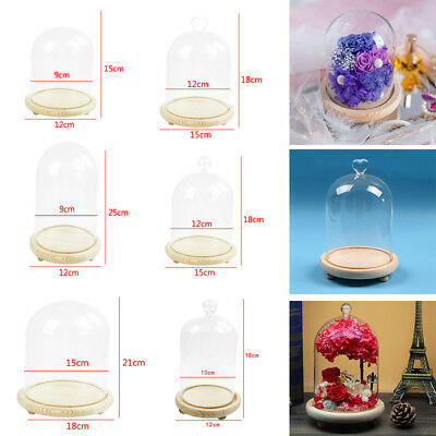 Small Medium Large Glass Dome Display Bell Jar Cloche Wooden Base Xmas DIY Decor