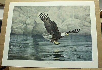 First Strike by Charles Frace Wildlife American Eagle Bald Eagle COA Hand Signed