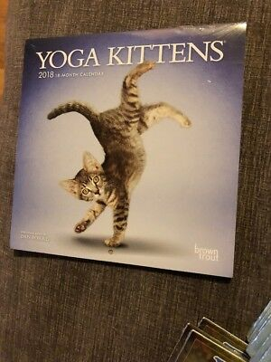 NEW 2018 Calendar Yoga Kittens Cats Mini Wall 7 x 7 inch 16 Month