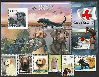 LABRADOR RETRIEVER** Gorgeous Int'l Dog Postage Stamps  **Great Gift Idea**