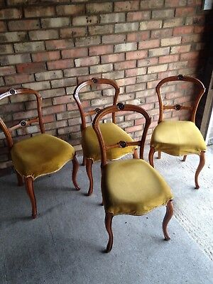 Antique Yew Dining Chairs