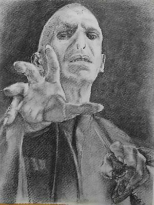 Original Charcoal Drawing Harry Potter Fans Dark Lord Voldemort A4 Portrait Art