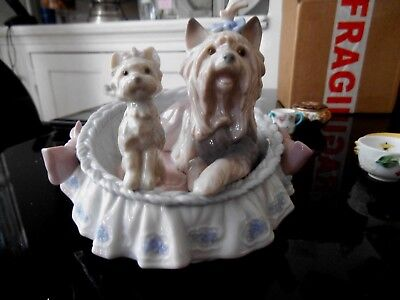 Lladro 6469  Yorkshire Terrier Dogs In A Basket Our Cozy Home