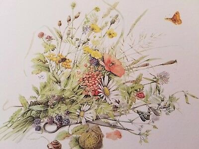 Marjolein Bastin Nature's Sketchbook 6 Blank Note cards/w 6 Envelopes-