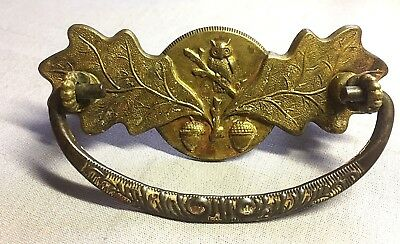 Antique Brass Stamped Ornate Drawer Pull w/Owl on Branch, Oak Leaves and Acorns