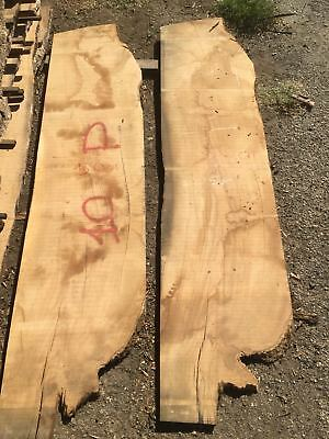 Coppia Tavole 10P ulivo Sp 20mm     olivewood boards oliven Holz brett