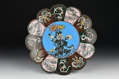 Antique Japanese Meiji Period Cloisonne Plate w/ Phoenix Birds & Dragons