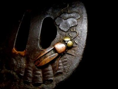 Japanese Tsuba Edo Antique Katana Sword  Firefly Iron F/S Excellent Rare