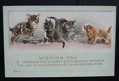 Vintage Cat/Dog/Greetings Postcard, Helena Maguire?- Posted 1905