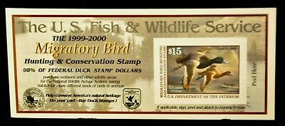 U. S. (#RW66A) 1999 - 2000 - US Federal Duck Stamp - Post Office FRESH