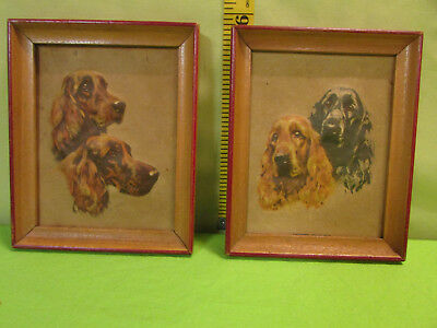 Vintage Print Irish Setters Dogs