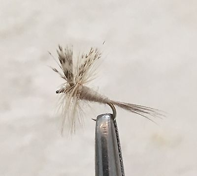 Light Cahill - Dry Fly Fishing Flies - 6 X Size #16 Flies