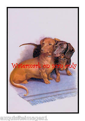 Antique Art~Pair of Dachshunds~Blue Rug~NEW Note Cards