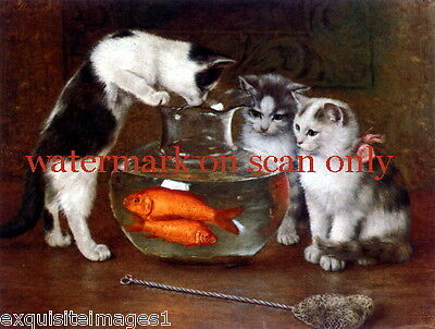 Vintg Art~3 Kitten Kittens Cat Cats~Fishbowl~Goldfish~Net~NEW Lge Note Cards