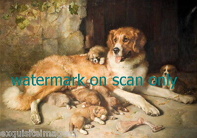 c1890 Art~St. Bernard Dog Dogs~Puppy with Puppies~ NEW Large Note Cards