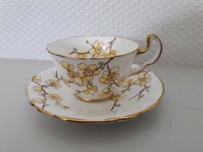 "Tasse Anglaise Fine Bone China Adderly ""chinese Blossom"""