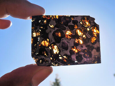 13.1 gram Highly translucent SERICHO pallasite Meteorite slices - from Kenya