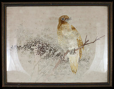 V. Fine Late Qing Chinese Embroidered Silk Panel Textile Hawk Bird Embroidery