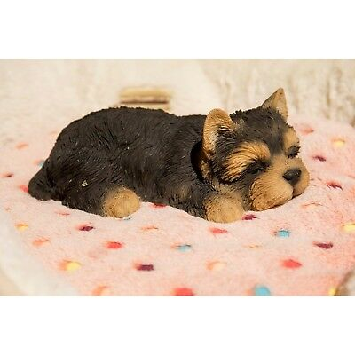 Lying Down Sleeping YORKSHIRE Puppy - Life Like Figurine Statue Home / Garden